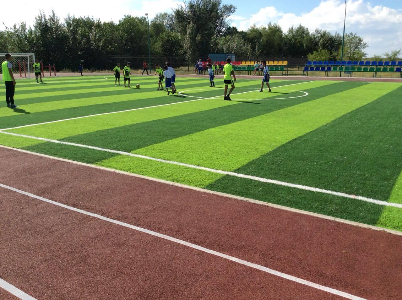 мини футбольное поле (картинка 2)